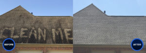 Before After IDW Roof Cleaning