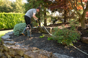 IDW Exterior Wash Landscaping