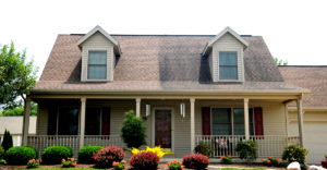 IDW Roof Cleaning Services